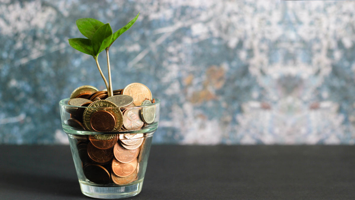 pot of coins with a plant sprouting out
